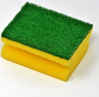 sponge-3081411__340